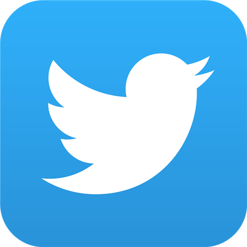 Twitter logo with white bird and light blue background.<a href=