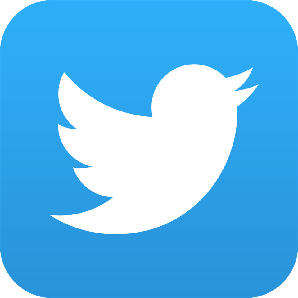 Blue and white twitter logo with white bird.