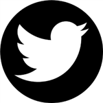 Twitter icon: opens to https://twitter.com/mikemoseleyelem